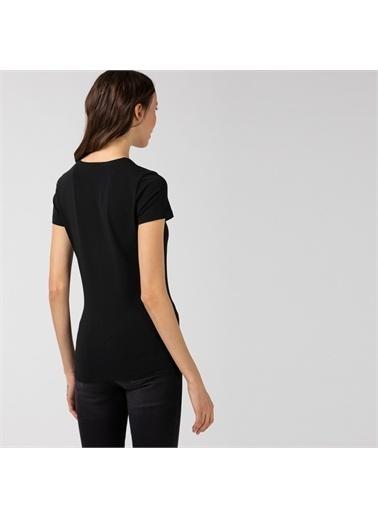 Lacoste Kadın  Tişört TF0999.031 Siyah